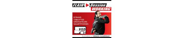 Téléchargez la video de Flair Session Working